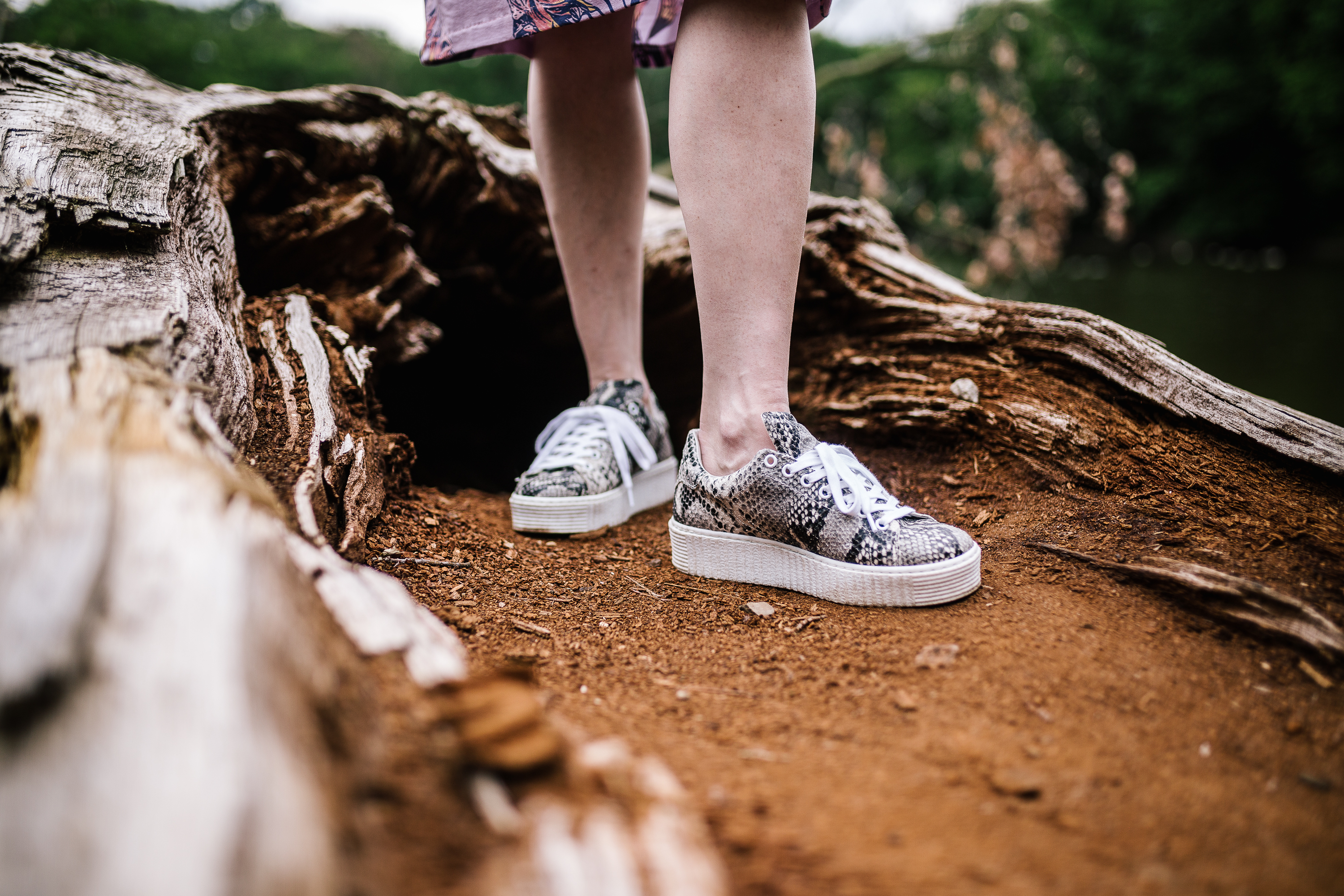 Sacha Shoes – Plateausneaker mit Schlangenmuster